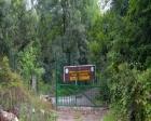 Fatih Ormanı'ndaki yapılar 29 yıllığına kiraya veriliyor!