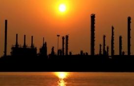 Sonatrach ile Rönesans Holding Adana'da petrokimya fabrikası kurulacak!