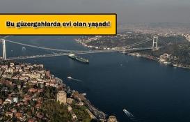 İstanbul'da 2019'da 8 yeni metro hattı açılacak!